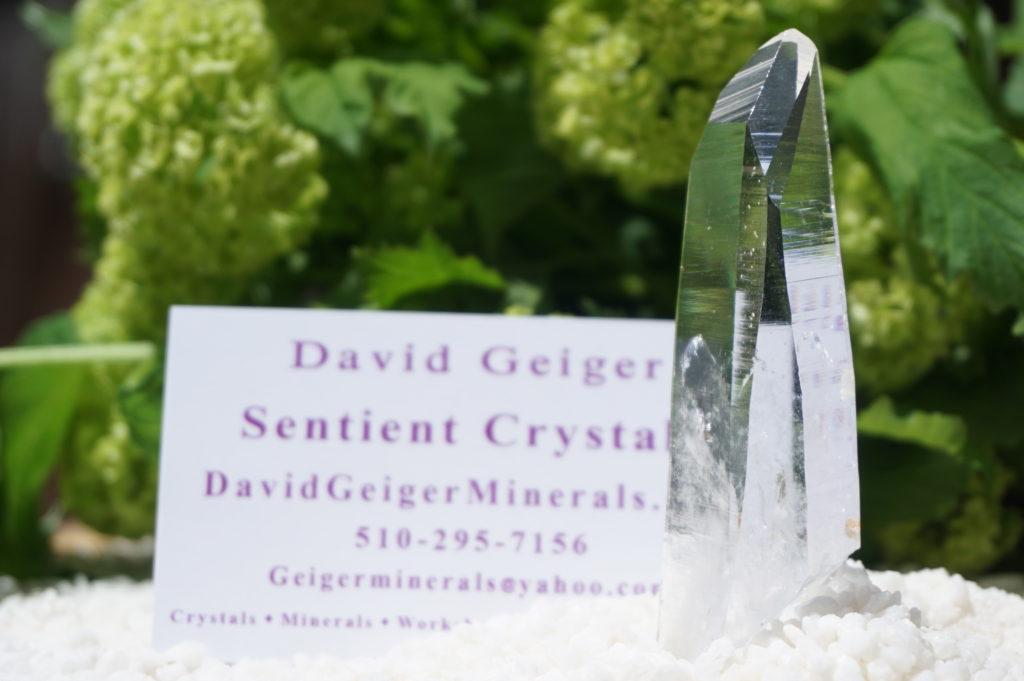 sentient-plasma-crystal-03
