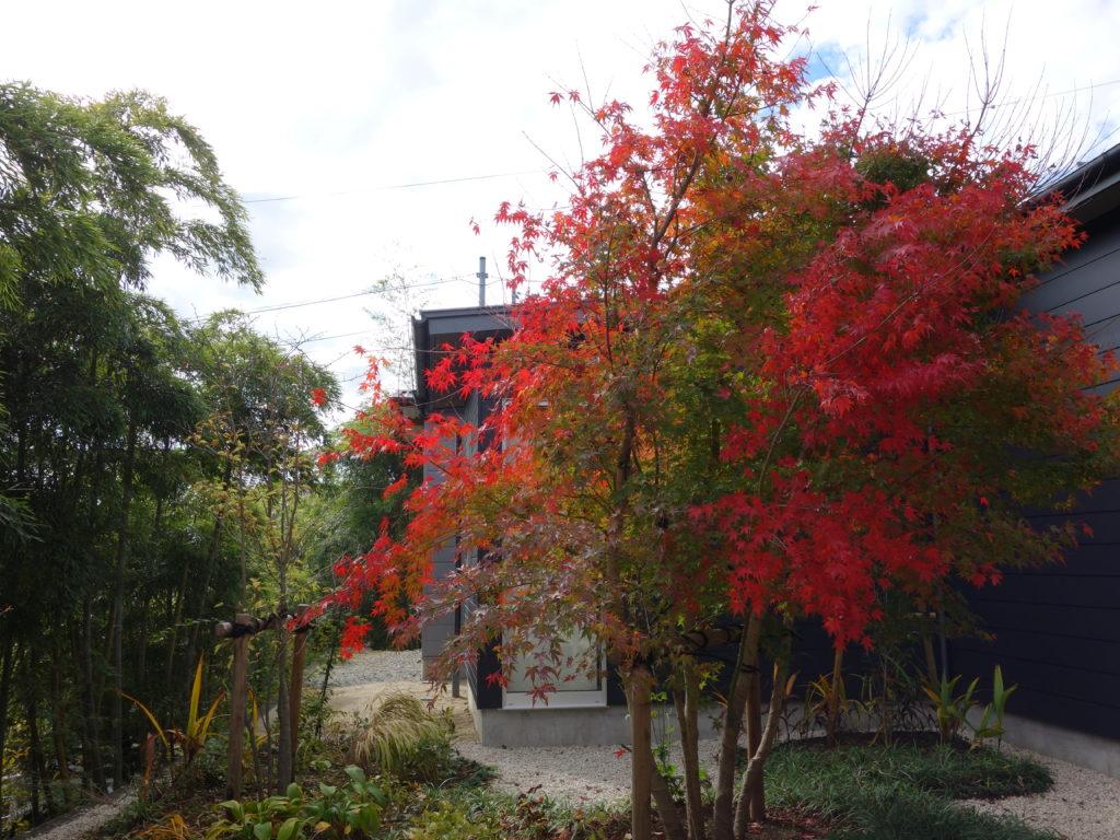 玉垣からの風景①