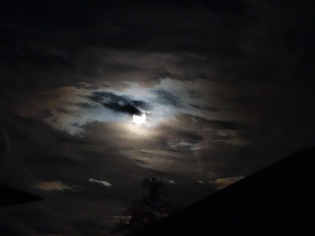 玉垣からの風景⑥今日は双子座の満月です