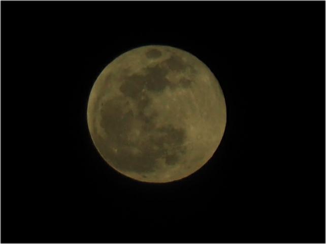 「月光浴」獅子座の満月