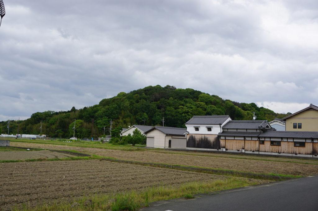 奈良フィールドワーク2019・5月②
