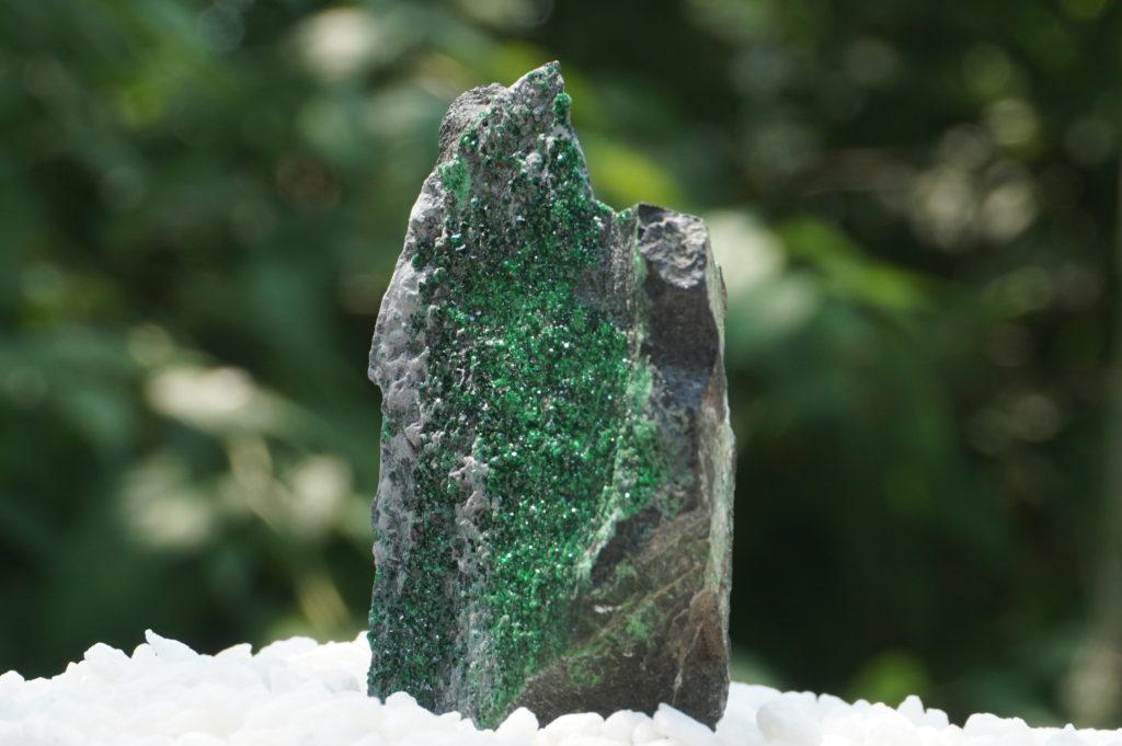 uva-garnet01