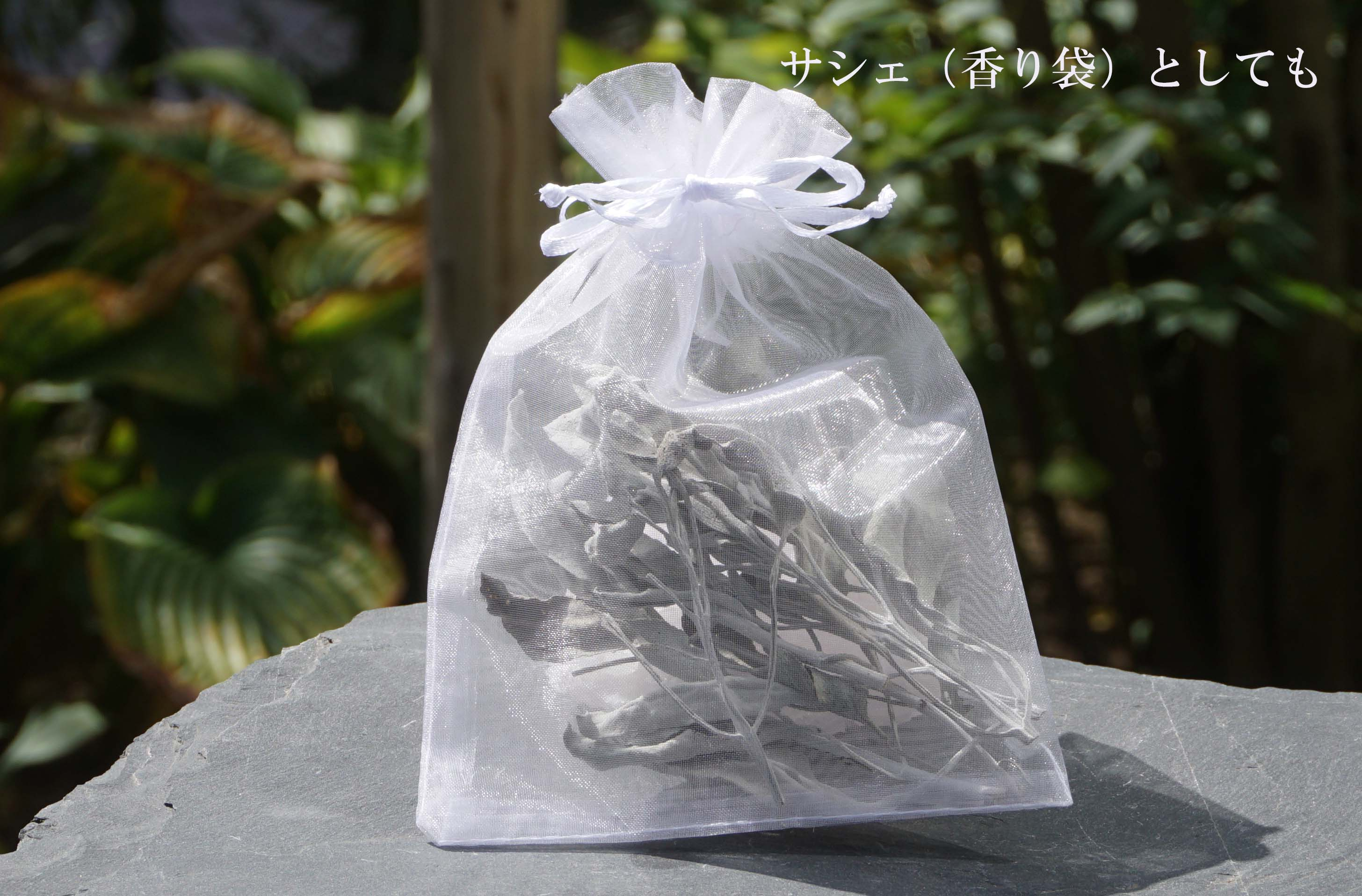 white-sage-kokusan-set01