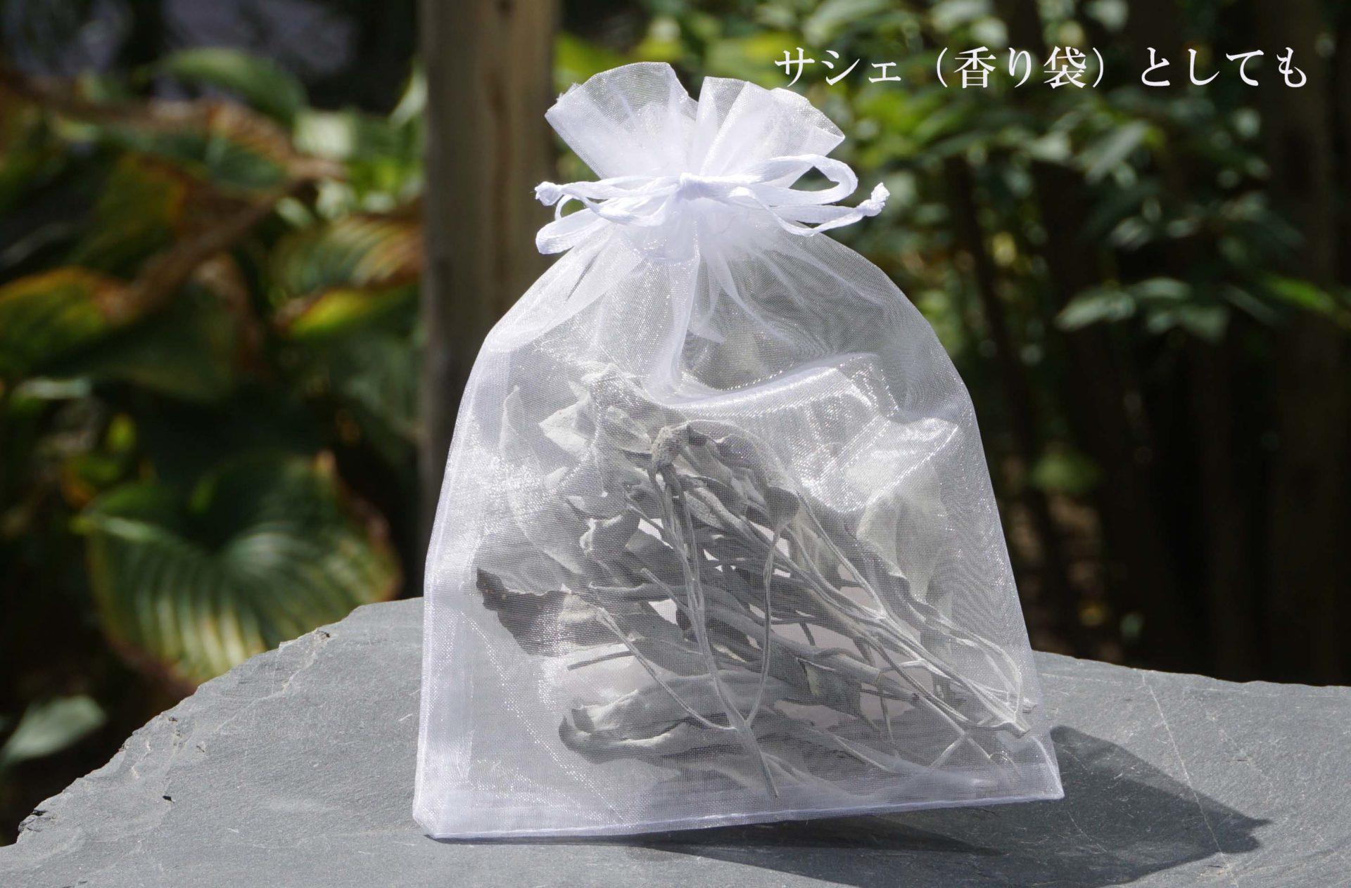 white-sage-kokusan