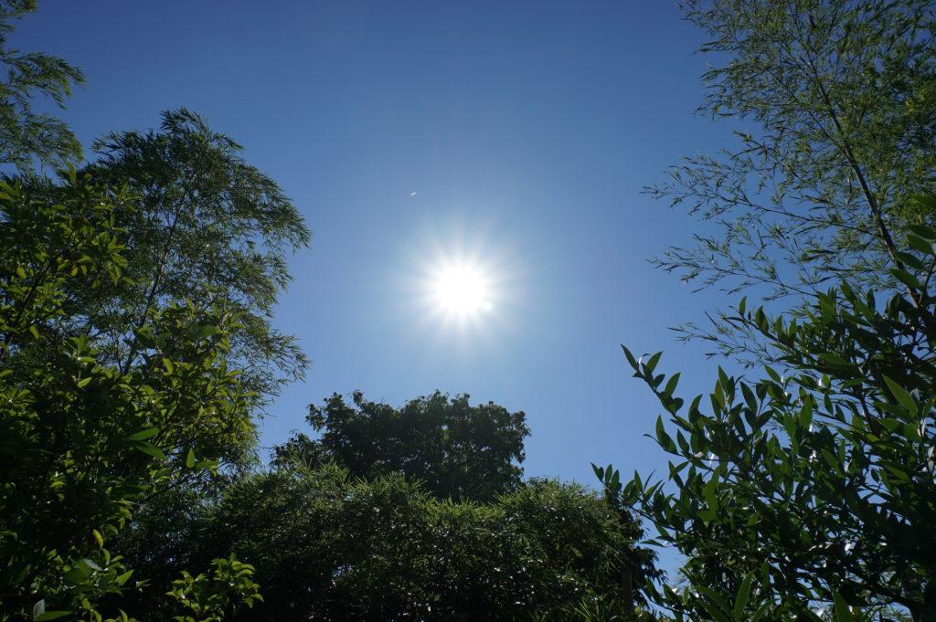 玉垣からの風景 8月15日 終戦の日 晴