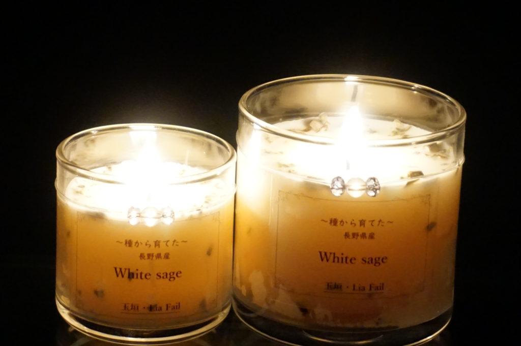 国産 (長野県産) ホワイトセージソイキャンドル