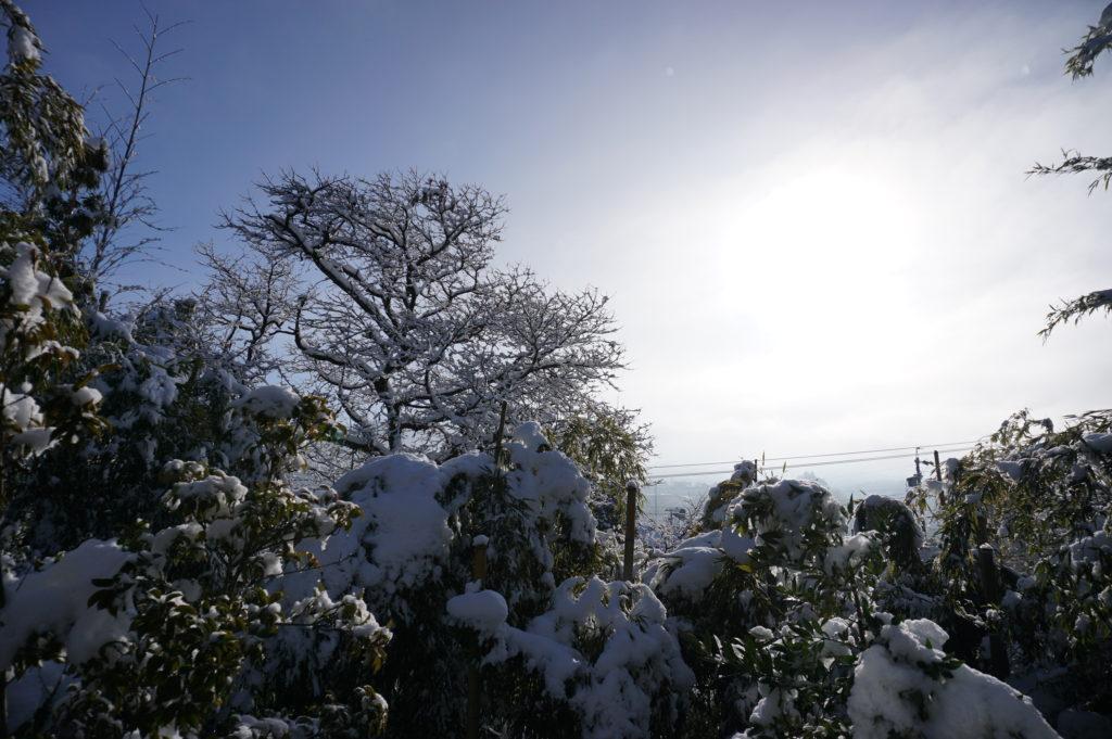 玉垣からの風景 雪解け